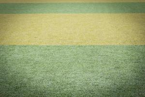 sfondo del campo di erba verde foto