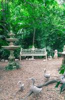 vecchia panchina nel parco - filtro effetto vintage foto