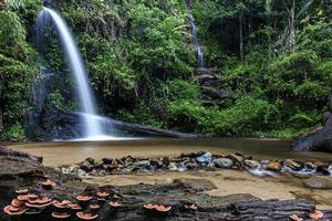 mon tha than cascata a chiang mai, thailandia foto