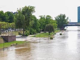 inondazione del fiume principale a francoforte sul meno foto