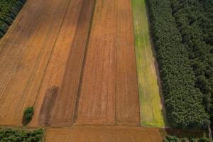 vista aerea dei campi sulla campagna polacca durante l'estate foto