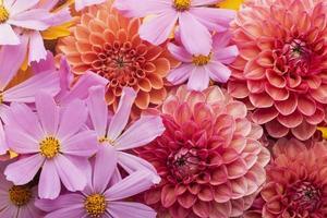 la splendida carta da parati con fiori arrangiati foto