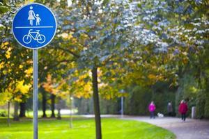 alberi e strade stagionali natura verde nel parco foto