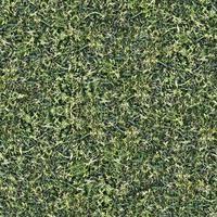 trama a terra erba verde senza soluzione di continuità foto