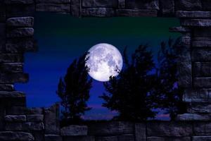 Luna piena del verme e albero nel campo e cielo notturno nel muro di pietra del foro foto