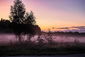 nebbia rosa al tramonto. crepuscolo sulla natura nella foresta foto