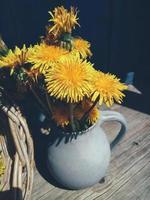 fiori estivi gialli in vaso su sfondo rustico blu foto