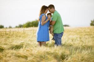 coppia romantica che si tiene per mano in un campo foto