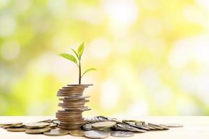pila di monete con un piccolo albero in cima foto
