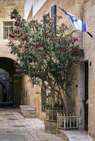 Città vecchia strada acciottolata scena nell'antica città di Gerusalemme Israele foto
