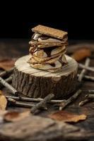 la deliziosa composizione di dessert mores foto