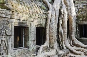 angkor wat rovine famoso punto di riferimento tempio dettaglio vicino a siem reap cambogia foto