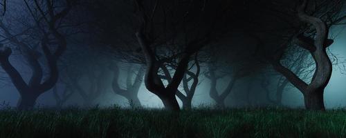 sfondo cupo di una foresta con nebbia foto