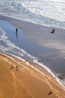 persone e uccelli marini ai pozzi del fuoco della spiaggia dell'oceano, san francisco foto