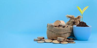 concetto di investimento azionario finanza crescita risparmio di denaro foto