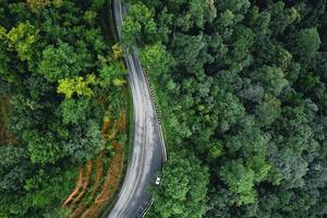 strada nella foresta stagione delle piogge natura alberi e viaggio nella nebbia foto