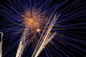 bellissimi fuochi d'artificio che colorano il cielo notturno scuro foto