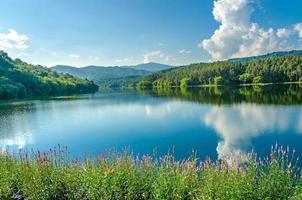 paesaggio della diga e del lago sulla montagna con alberi e foreste. foto
