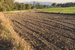 terreno ghiaioso e terreno asciutto, il terreno che prepara per la coltivazione. foto