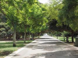 giardini pubblici parco pubblico a cagliari foto