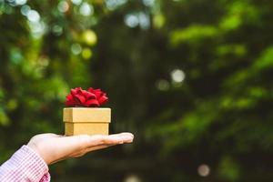 mani che tengono la confezione regalo. felicità, foto