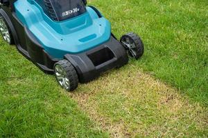 la macchina per il movimento del prato taglia l'erba verde, piantagione di hobby nel giardino di casa. foto