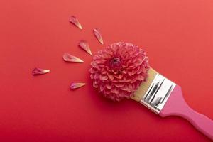 bei fiori di assortimento distesi piatti foto