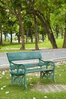 vecchia sedia verde nel parco alla luce naturale foto
