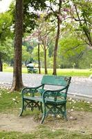 sedia in legno verde nel parco foto