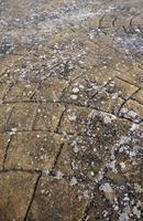 pavimento in ciottoli con muschio foto