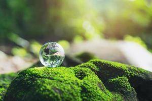 un piccolo globo rotondo che poggia su una roccia e ha una piccola erba foto