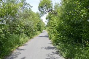 strada asfaltata vuota in campagna foto