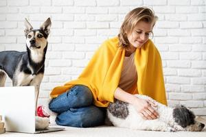divertente giovane donna in plaid giallo seduta sul pavimento con i suoi cani foto