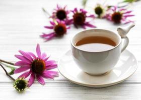 tè all'echinacea con fiori freschi. foto
