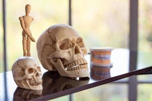 scheletro del cranio sullo scaffale nella stanza del laboratorio a scuola foto