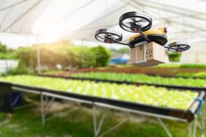 idroponica agricoltura di verdure drone in una fattoria moderna al chiuso foto