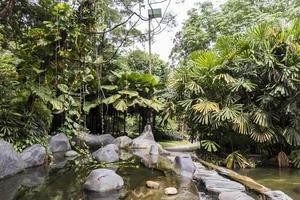 giardino dell'oasi nei giardini botanici di Perdana a Kuala Lumpur, Malesia. foto