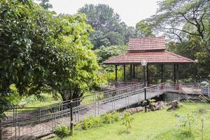 bellissimo parco giardini botanici perdana a kuala lumpur, malesia. foto