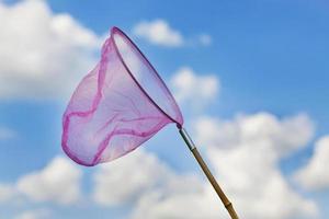 rete per catturare farfalle sullo sfondo del cielo foto