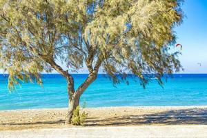kremasti beach rodi grecia acqua turchese e alberi del parco. foto