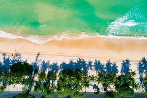 vista aerea dall'alto verso il basso delle palme da cocco foto