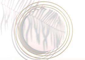 vista dall'alto, sfondo piatto astratto con figura pastello. sfondo flatlay creativo. idea creativa, layout. illustrazione 3D foto