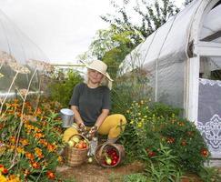 una contadina sta riposando vicino alla serra. raccolta di pomodori, peperoni e cetrioli. autunno in campagna. foto