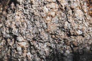 primo piano strutturato di roccia con piccoli pezzi glitterati sulla superficie. foto