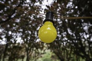 lampadina colorata foto