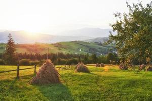 pagliaio al tramonto. prato, pezzo di prato, in particolare quello utilizzato per il fieno. monti carpazi, ucraina foto