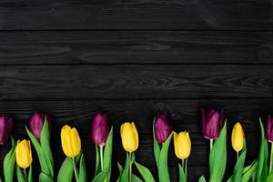 una fila di fiori di tulipano primaverile giallo e viola su un fondo di legno nero. posa piatta. copia spazio. festa della mamma. giornata internazionale della donna. foto