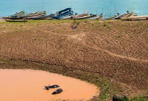 bufalo che si rilassa in un pantano di fango vicino al fiume mekong foto