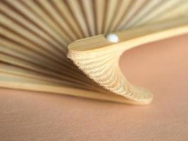 ventaglio pieghevole giapponese foto