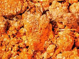 trama di terra arancione foto